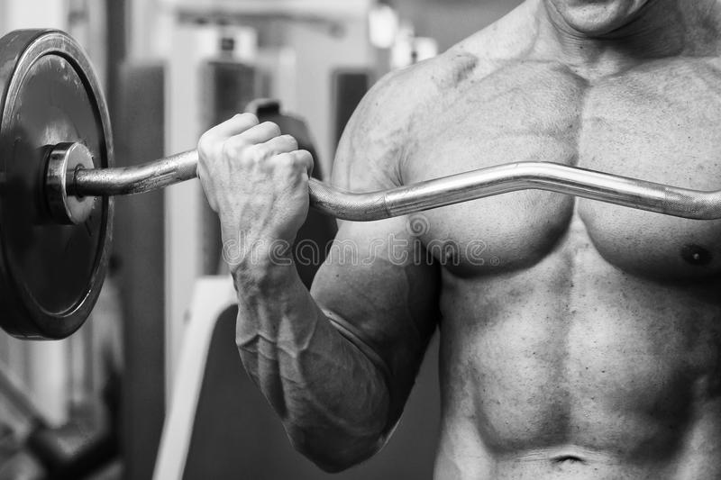 A professional athlete trains in the gym. Work on your body. Exhausting strength exercises. Photo for sports magazines, posters and websites stock photo