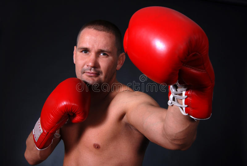Download Professional boxer stock image. Image of studio, punch - 20191575
