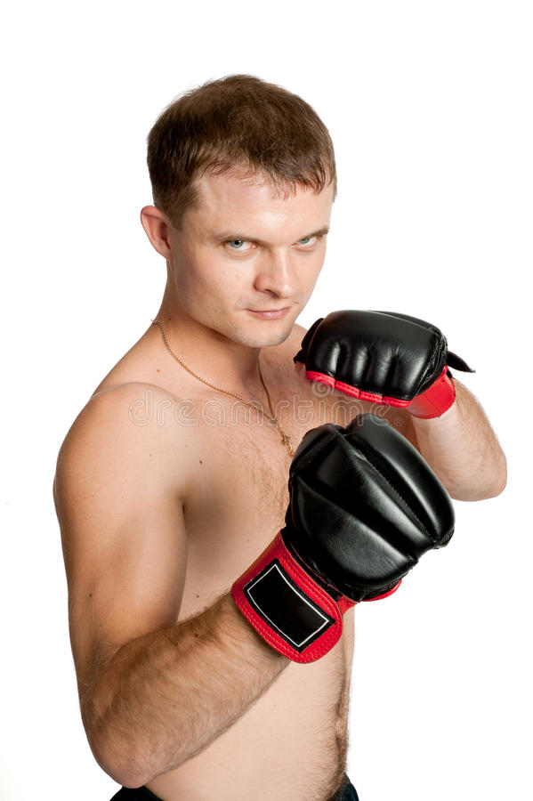 Download Professional Boxer Isolated On White Background Stock Photo - Image: 17919162