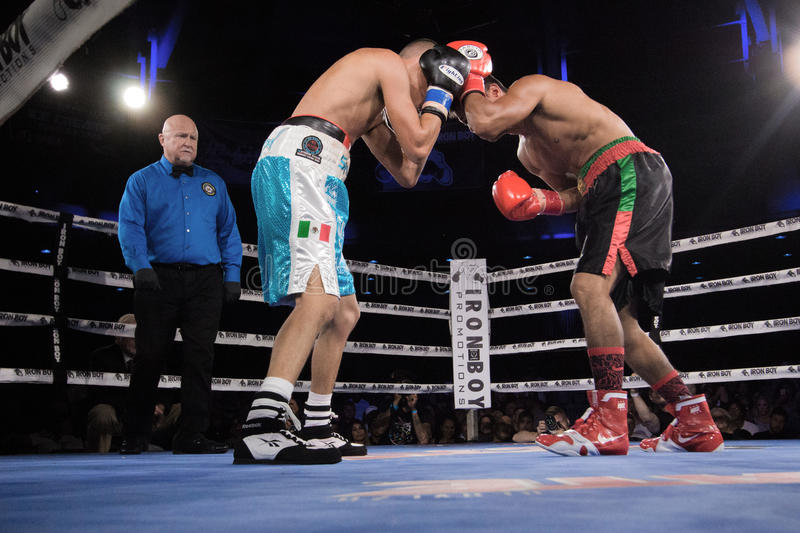 Professional Boxing in Phoenix, Arizona. Sep. 3, 2016. A huge crowd was captivated by talented young boxers, many from the Phoenix area, as they fought intense stock image