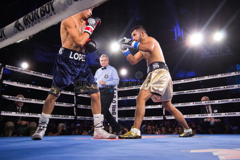 Professional Boxing in Phoenix, Arizona. Sep. 3, 2016. A huge crowd was captivated by talented young boxers, many from the Phoenix area, as they fought intense stock photos