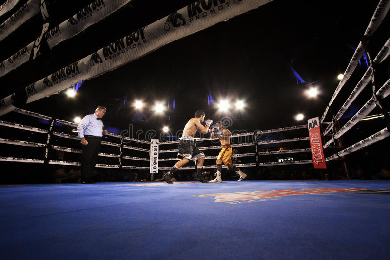 Professional Boxing in Phoenix, Arizona. Sep. 3, 2016. A huge crowd was captivated by talented young boxers, many from the Phoenix area, as they fought intense royalty free stock photography