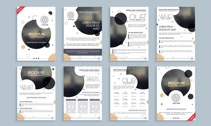 Professional Brochure Template Or Flyer Layout Stock Image Image