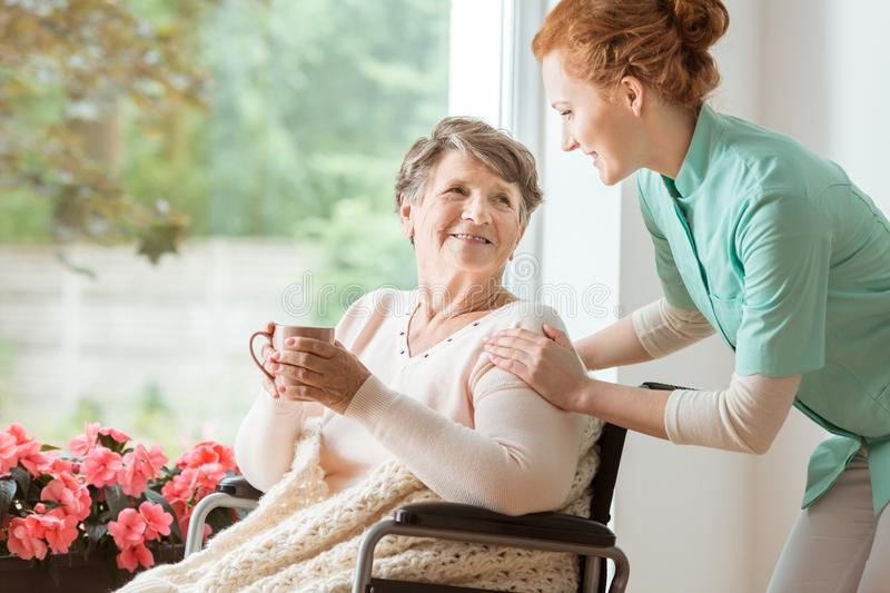 A professional caretaker in uniform helping a geriatric female p. Atient on a wheelchair. Senior holding a cup and sitting by a large window in a rehabilitation stock photo