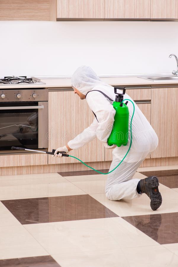 The professional contractor doing pest control at kitchen. Professional contractor doing pest control at kitchen royalty free stock images