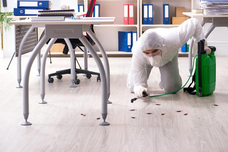 The professional contractor doing pest control at office. Professional contractor doing pest control at office royalty free stock photography
