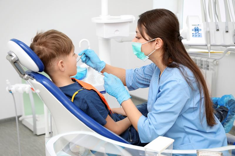 Professional dentist working with little boy in royalty free stock photo