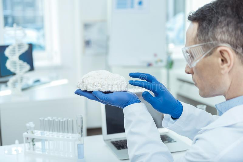 Professional doctor preparing for brain surgery. Precise examination. Professional doctor examining brain surface while preparing for a surgery royalty free stock images