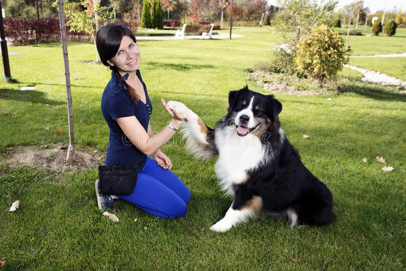 Professional Dog Handler. Training in the park royalty free stock images