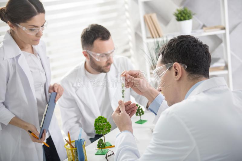 Professional ecologists conducting new experiments. Experiment with plants. Concentrated professional experienced ecologists working on a project and wearing a royalty free stock photos
