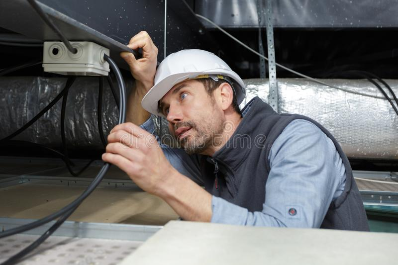 Professional electrician fixing cables up in roof stock photography