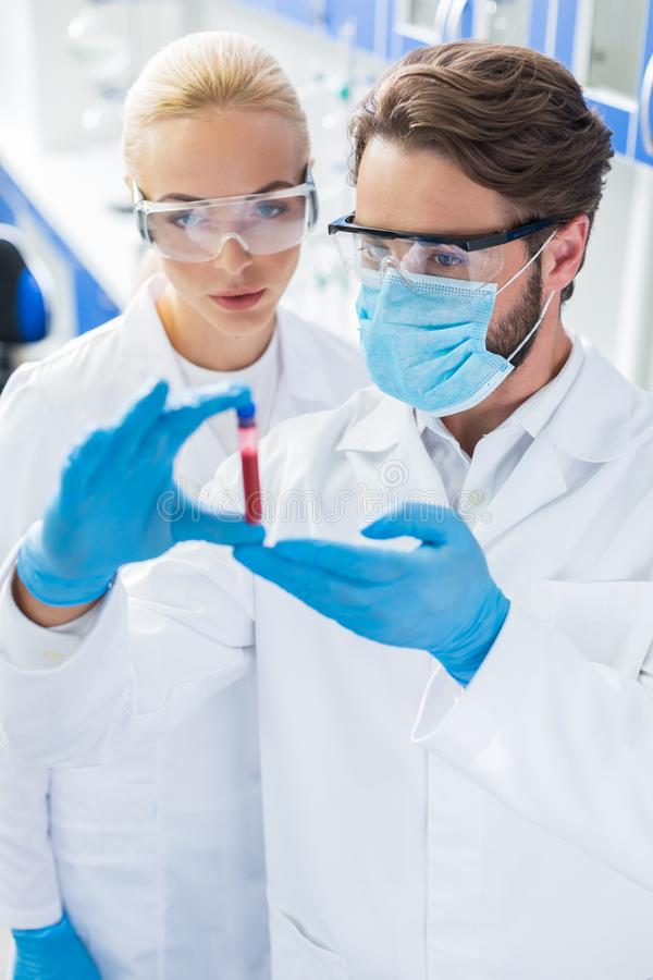 Professional experienced scientists looking at the blood sample stock photography