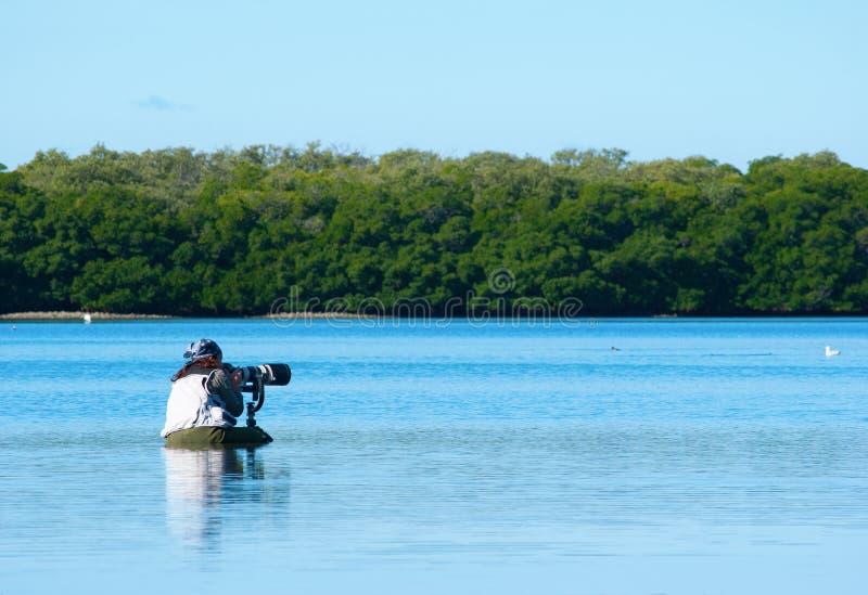 Professional female nature photographer royalty free stock photo