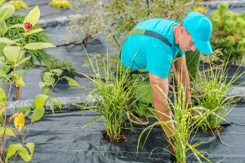 Professional Gardener Job stock images