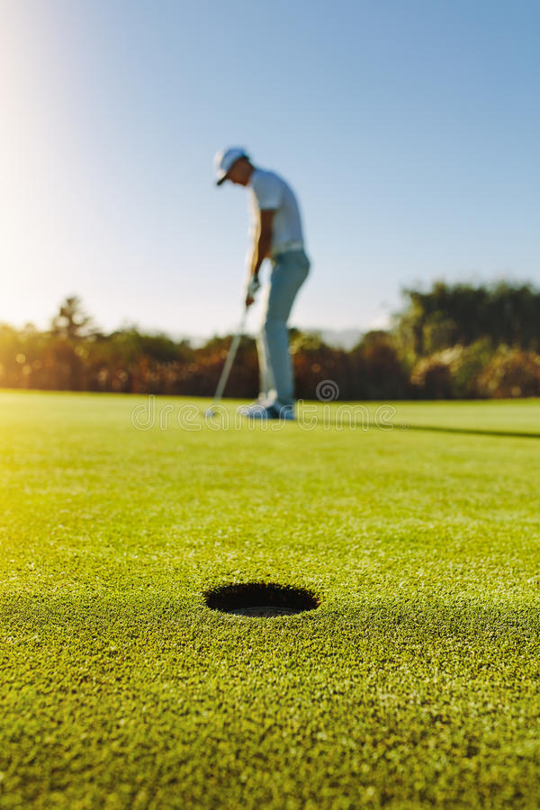 Professional golfer putting ball in hole royalty free stock image