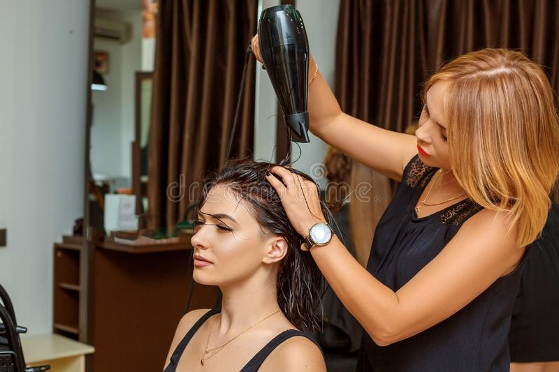 Professional hairdresser with a client in the salon royalty free stock photos