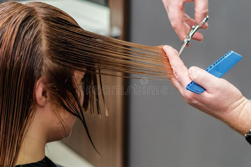Professional hairdresser is cutting woman`s long hair tips in beauty salon. stock image