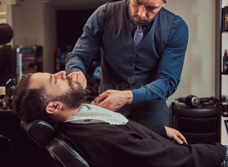 Professional hairdresser modeling beard with scissors and comb at the barbershop. Bearded male sitting in an armchair in a barber shop while hairdresser royalty free stock images