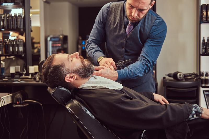 Professional hairdresser modeling beard with scissors and comb at the barbershop. Bearded male sitting in an armchair in a barber shop while hairdresser stock image