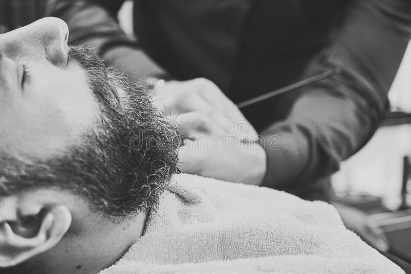 Professional hairdresser modeling beard with scissors and comb at the barbershop. Close-up photo royalty free stock image