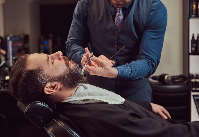 Professional hairdresser modeling beard with scissors and comb at the barbershop. Close-up photo royalty free stock photos