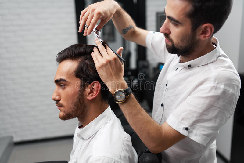 download professional hairstylist is cutting the clients hair stock photo image of service profession