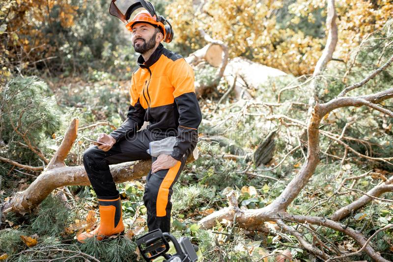 Professional lumberman resting in the forest stock image
