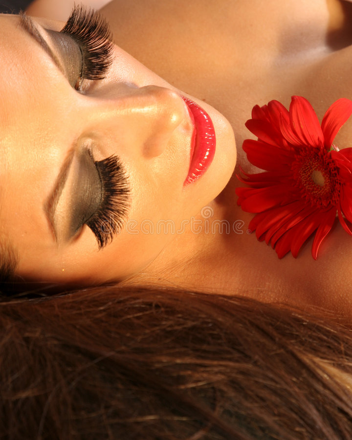 Download Professional Make-up stock photo. Image of woman, eyelashes - 2894534