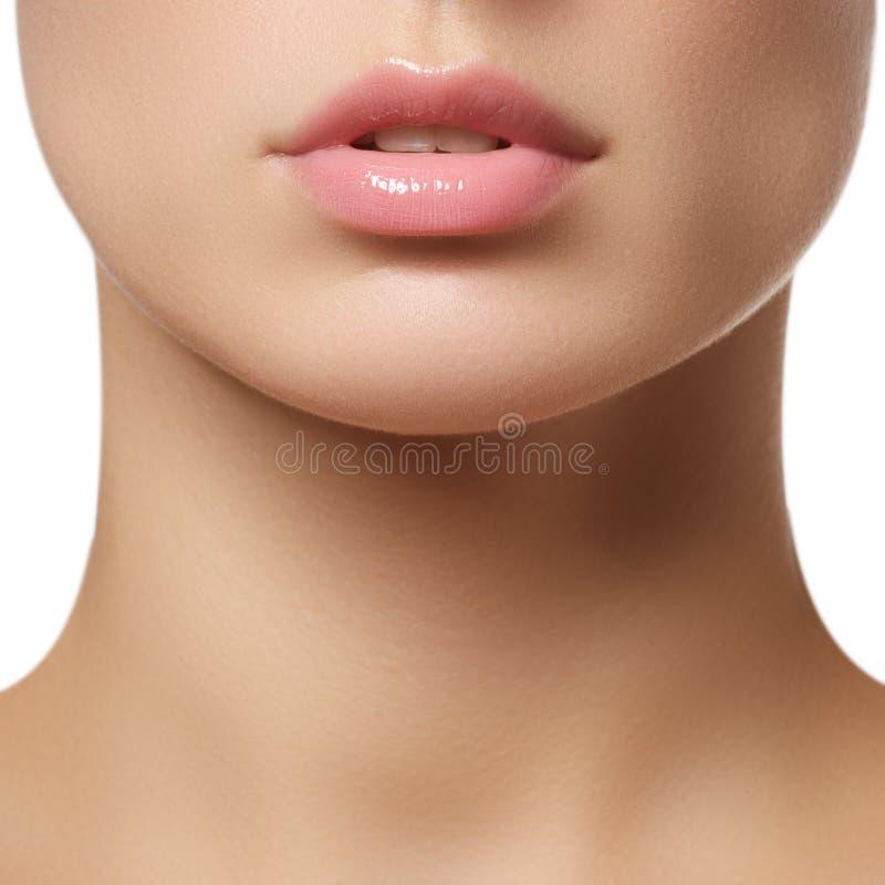 Professional make-up. Lipgloss. Lipstick royalty free stock image