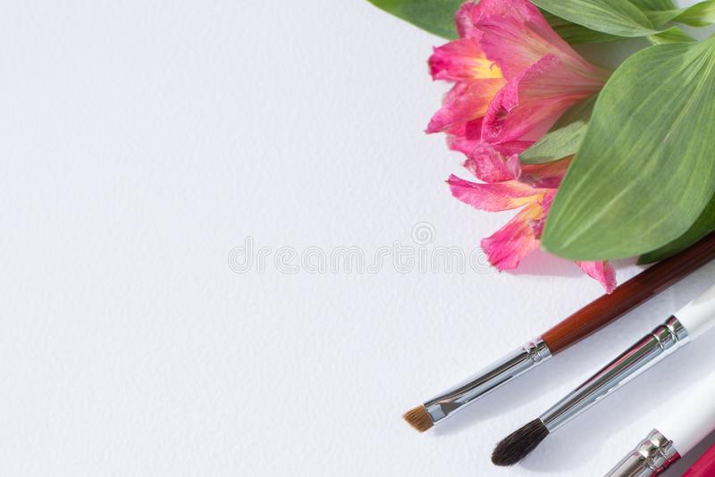Professional makeup tools brushes, eye shadows, lipgloss, flowers flat lay composition copy space on white background stock photo