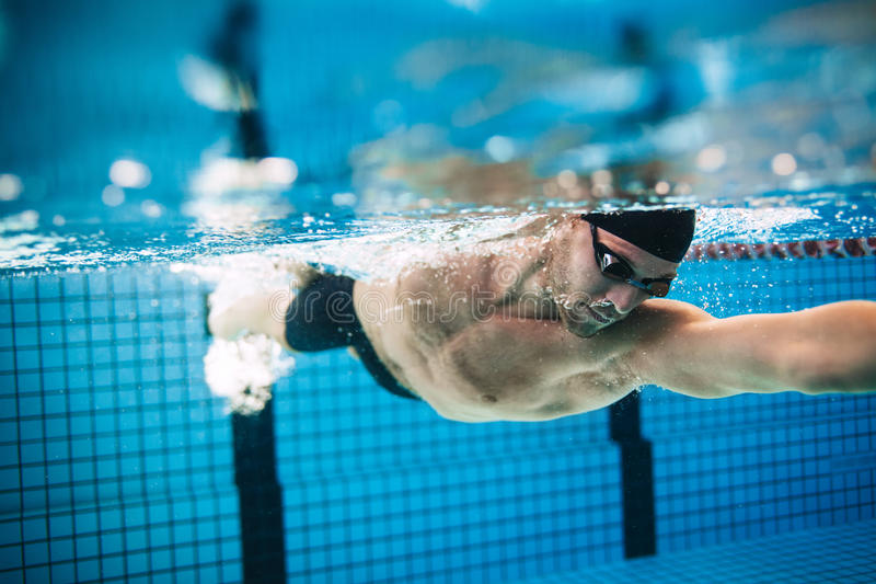 Professional male athlete swimming in pool. Underwater shot of professional male athlete swimming in pool. Man swimmer in action royalty free stock images