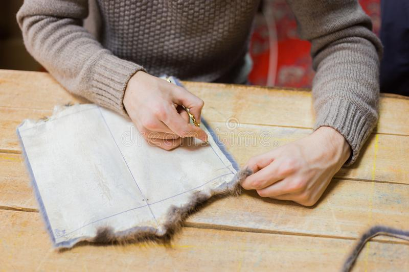 Skinner working with mink fur skin. Professional male skinner, furrier working with mink fur skin at atelier, workshop. Fashion and leatherwork concept royalty free stock images