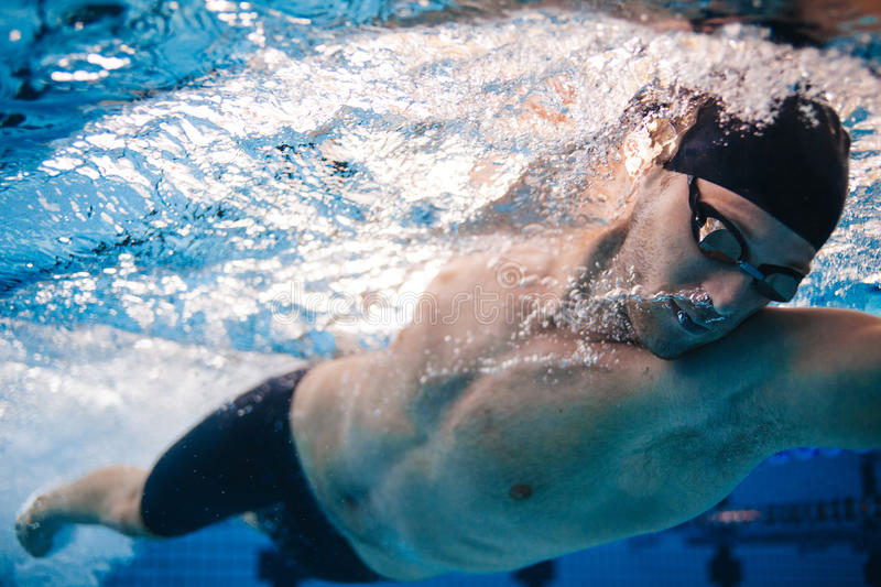 Professional male swimmer inside swimming pool. Underwater shot of fit young man practising in pool royalty free stock images