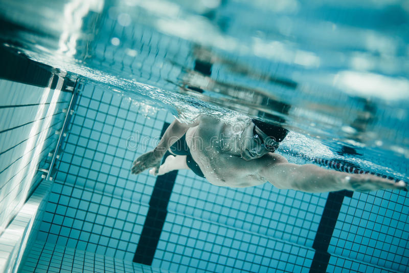 Professional male swimmer inside swimming pool. Underwater shot of young sportsman swimming in pool. Professional male swimmer inside swimming pool stock images
