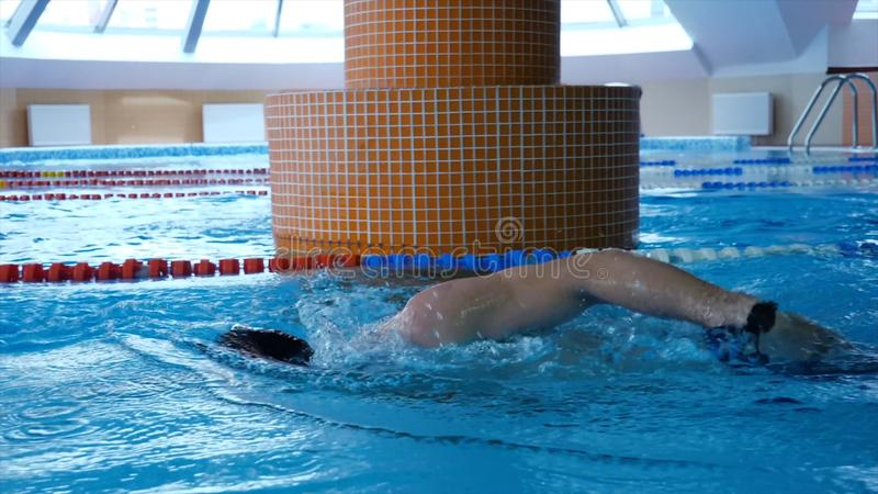 Professional male swimmer practising in swimming pool. Young sportsman swimming in pool. Slow motion.  royalty free stock photos