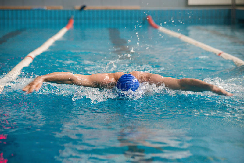 Professional man swimmer swims. The man is a professional swimmer swims in the pool quickly royalty free stock photo