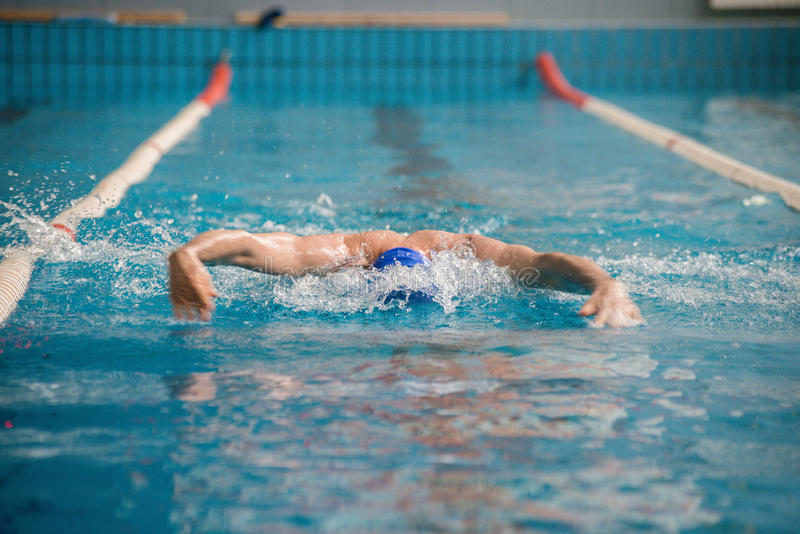 Professional man swimmer swims. The man is a professional swimmer swims in the pool quickly royalty free stock image