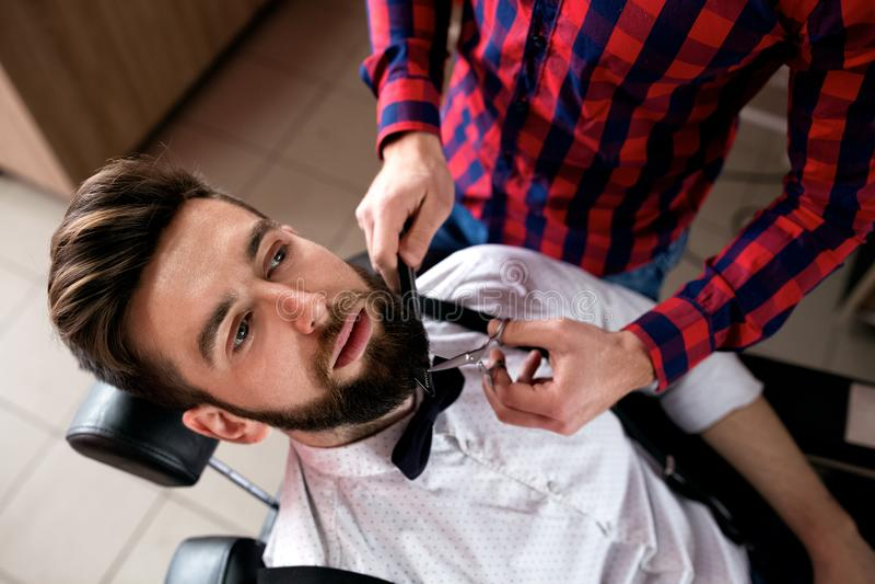 Professional master hairdresser cuts client beard stock photos