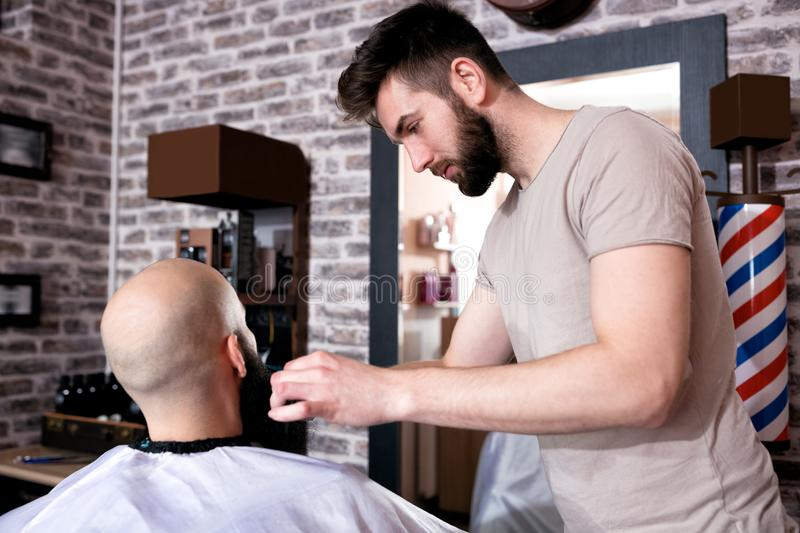 Professional Master hairdresser cuts client beard royalty free stock image