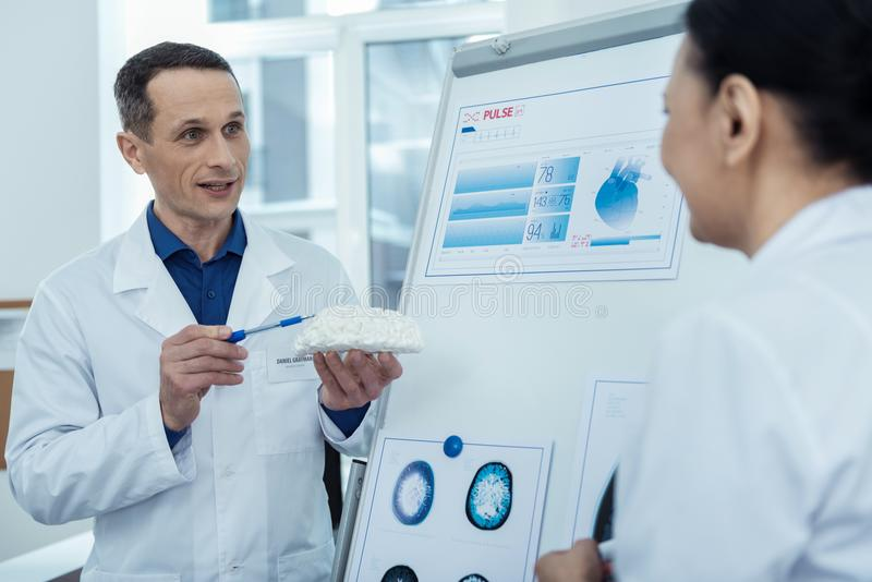 Professional neurosurgeons talking about brain surgery. Reasons of head injures. Professional doctors holding brain model while discussing future operation royalty free stock photos