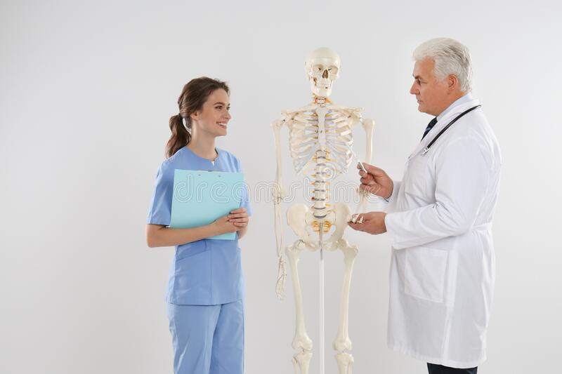 Professional orthopedist with human skeleton model teaching medical student against background stock photography