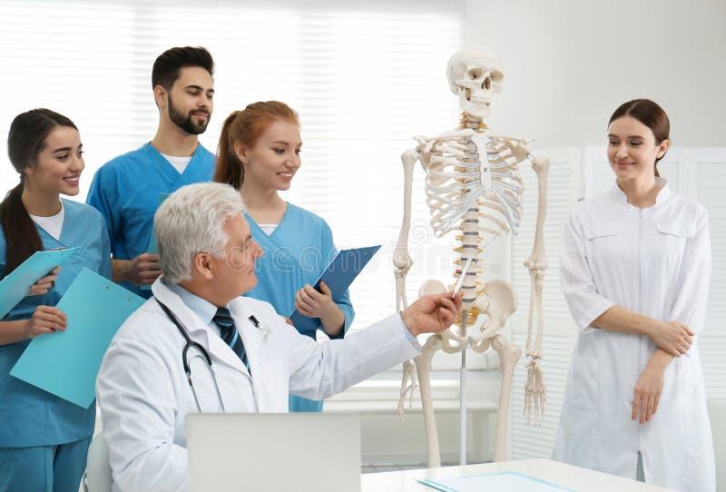 Professional orthopedist teaching medical students royalty free stock photo