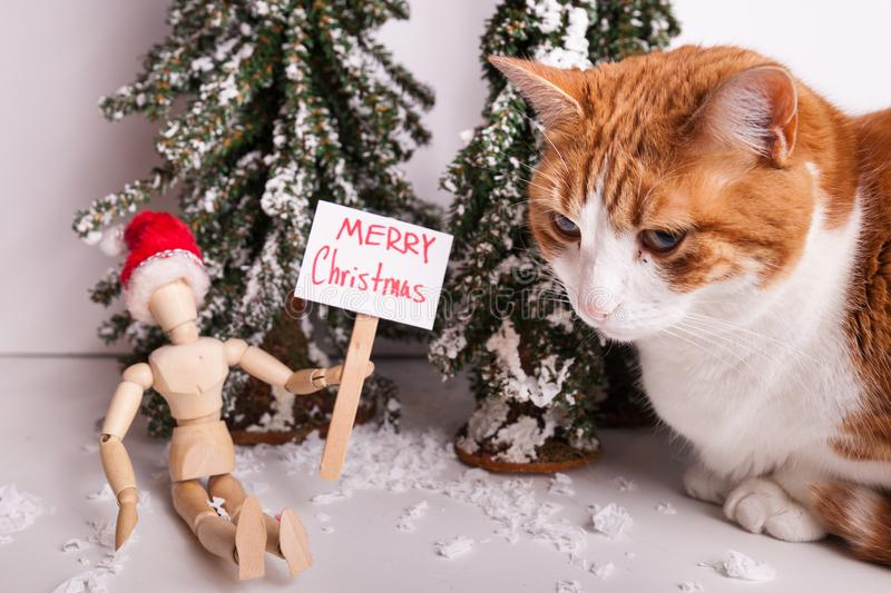 Merry Christmas picket sign held by wooden jointed manikin doll wearing a red Santa hat orange and white cat sitting close stock photography