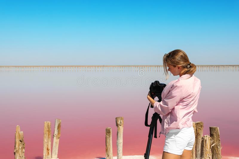 Professional photographer taking photo of pink lake. On sunny day stock images