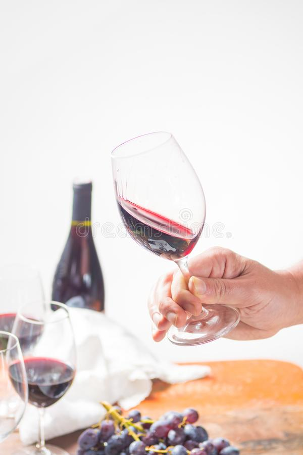 Professional red wine tasting event with high quality wine glass stock images