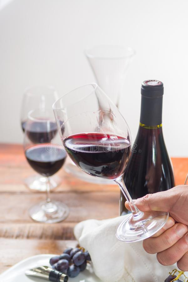 Professional red wine tasting event with high quality wine glass royalty free stock images