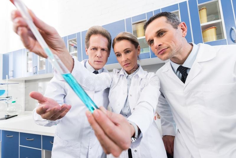 Scientists making experiment. Professional scientists in white coats looking at test tube while making experiment in chemical lab stock photo