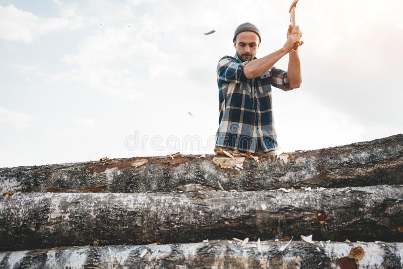 Professional strong lumberjack work on sawmill and sawing big tree with ax royalty free stock photos