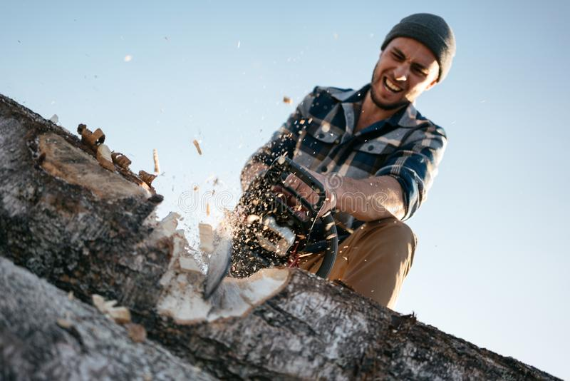 Professional strong lumberjack work on sawmill and sawing big tree with chainsaw. Sawdust fly apart royalty free stock photo