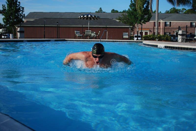 Professional swimming stock image